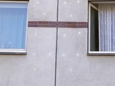 gebrauchtes haus kaufen was beachten Immobiliengutachter Gutachter für Schäden, Algen Vollwärmeschutz Wärmedämmverbundsystem Sachverständiger Fassade und Fenstergutachter Beratung zum Hauskaufen in München