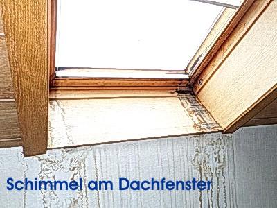 Immobilienexperte - Hausschätzer altes Haus ohne einen Makler verkaufen, auf Mängel hinweisen Haushalt, Wohnung , Schimmelbefall, Immobiliencheck-Hausinspektion Bauabnahme Eigentumswohnung Schimmel am Dachfenster