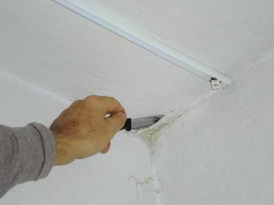 Schimmel selber von der Wand und decke entfernen