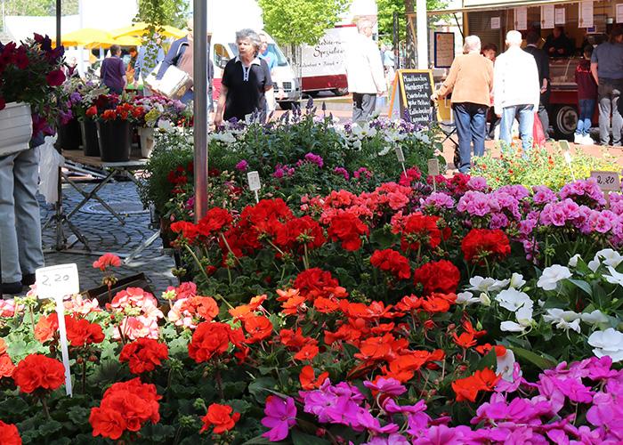 """Regional schmeckt besser! das """"Ab in die Mitte"""" Projekt vom Stadtmarketing Baunatal und dem Wochenmarkt Baunatal"""