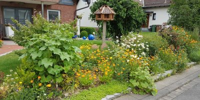 Vorgarten, Blumen, Blütenmischung