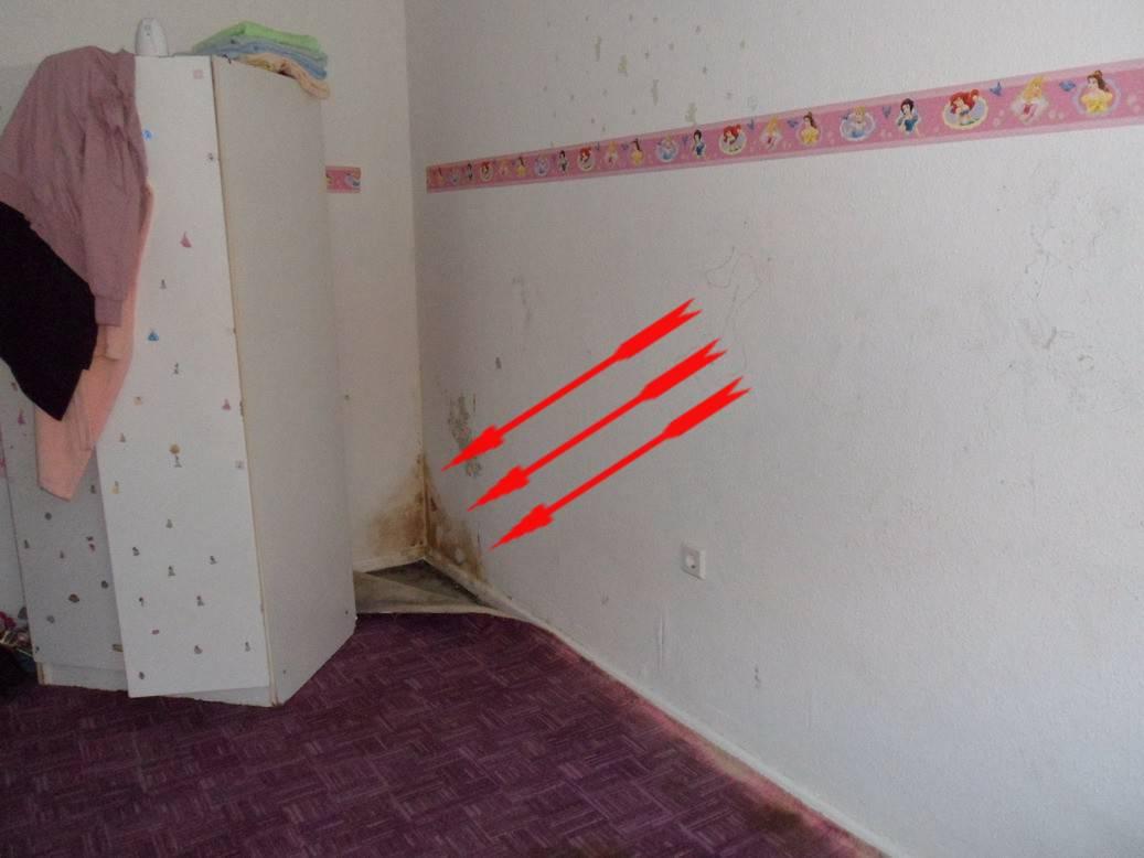 mietminderung wegen schimmel im schlafzimmer searsucker bettw sche bettdecken in bergr e. Black Bedroom Furniture Sets. Home Design Ideas