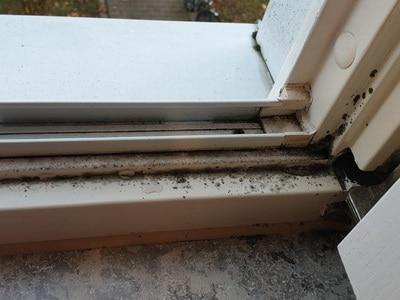 Fenstergutachter, angelaufene Fensterscheiben Schimmel im Fensterrahmen, Fenstereinbau