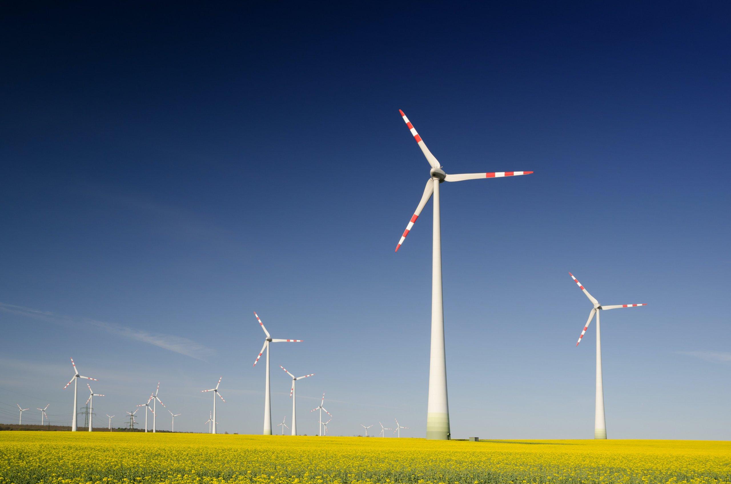 Kaufland Hrvatska ima veliku novost: Trgovački lanac po novom pokreće zelena energija