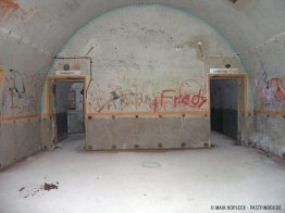 bunker-palmPB200357