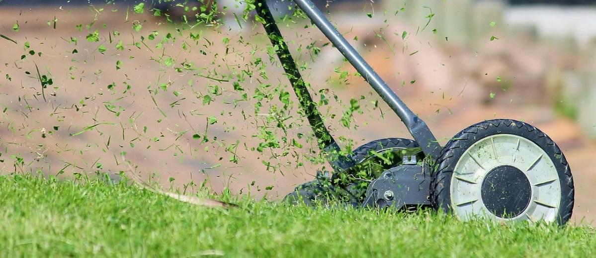 Rasen mähen mit einem Rasenmäher
