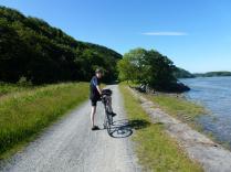 On the Mawddach Trail