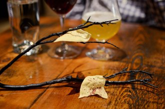 Chips on a branch Trokay Truckee