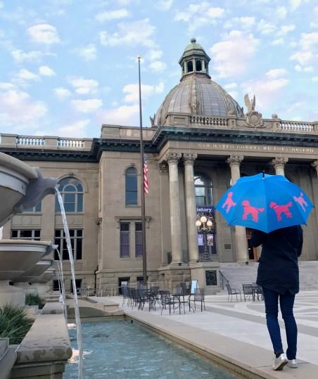 SF Umbrella Company Doodle Umbrella