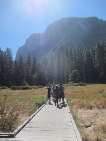 Sentinel Meadow & Cook's Meadow Loop Yosemite