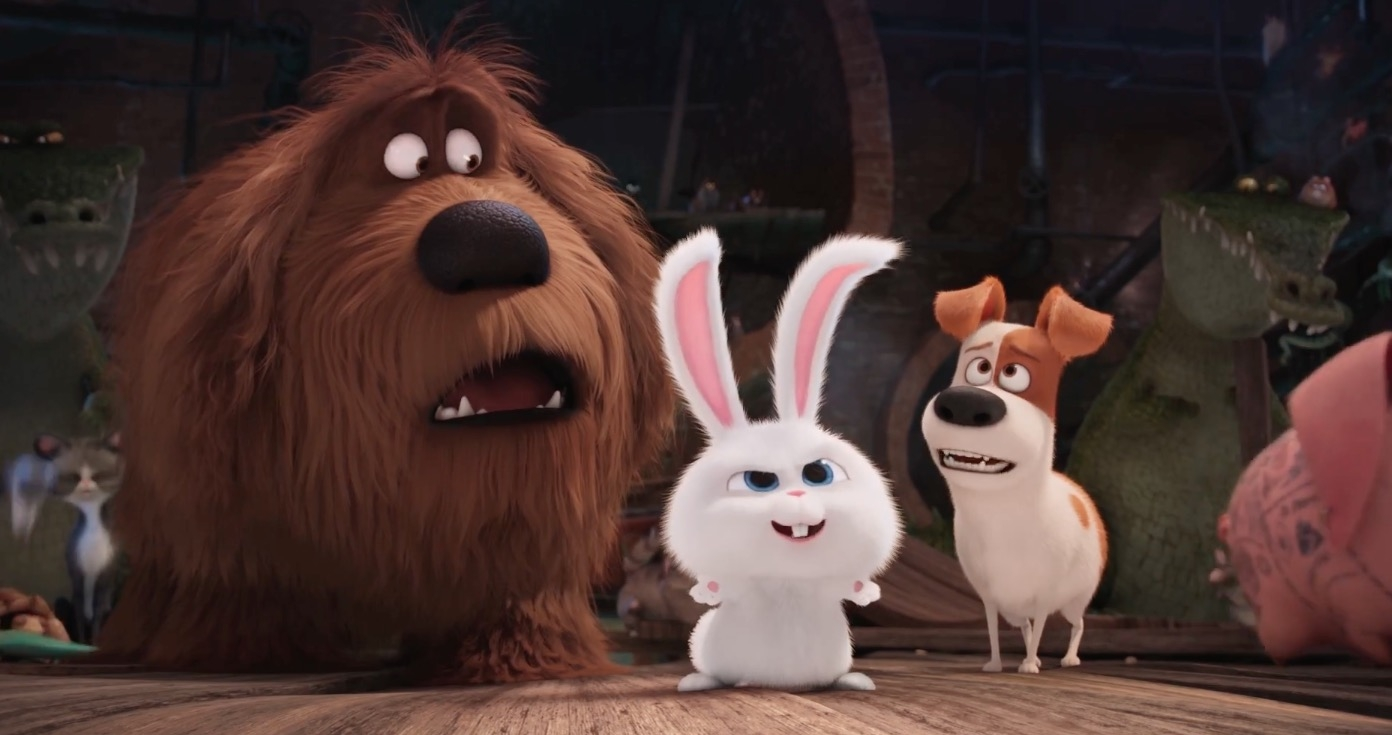 Image result for the secret life of pets 2016