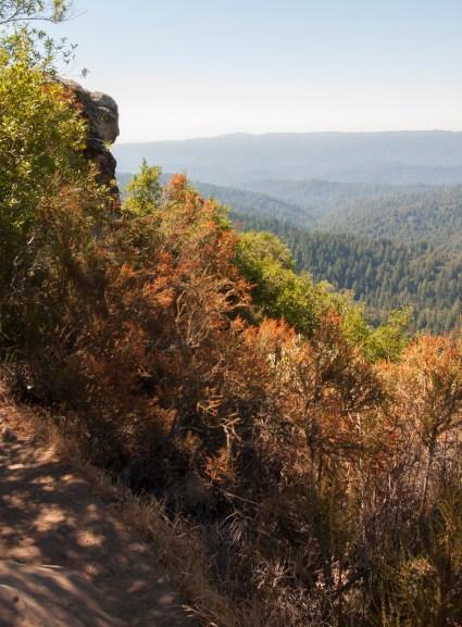 Castle Rock-face overlooking vista