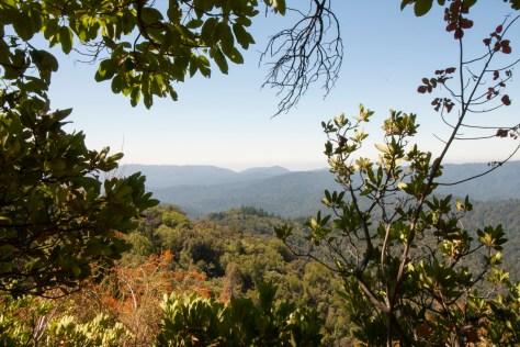 Castle Rock-framed vista