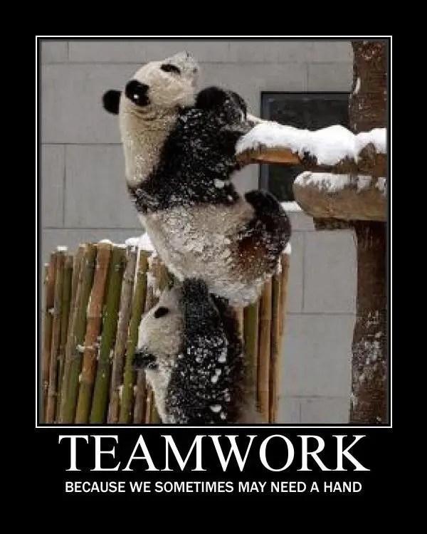 team effort quotes