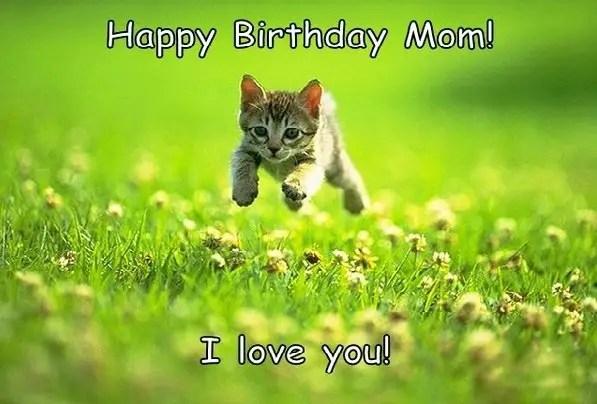 Funny Mom Birthday Meme : 120 extremely creative & funny happy birthday memes bayart
