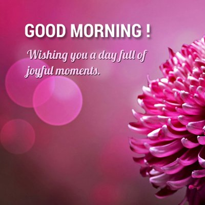 Good Morning Flowers: Wishing you a day full of joyful moments