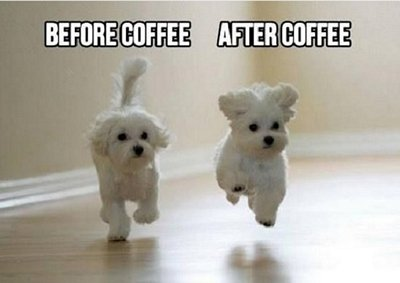 74 Funny Happy Good Morning Meme To Explode Your Energy Bayart