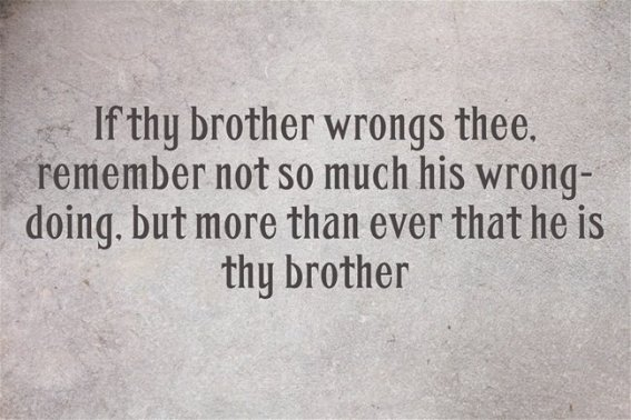 274+ Memorable Brother Quotes To Show Your Appreciation