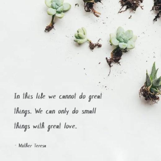 inspirational senior quotes