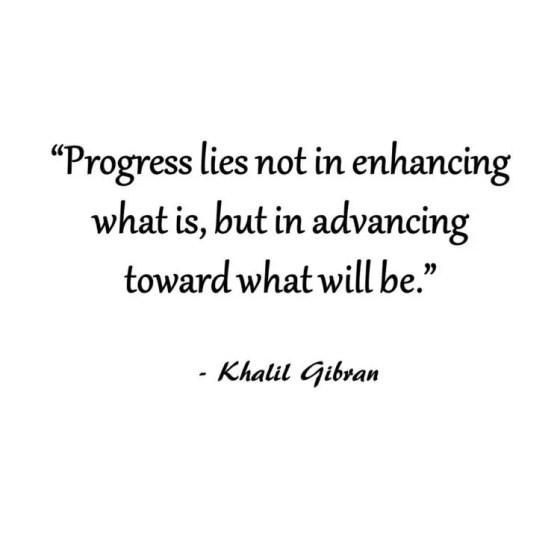 progress lies not in enhancing what is