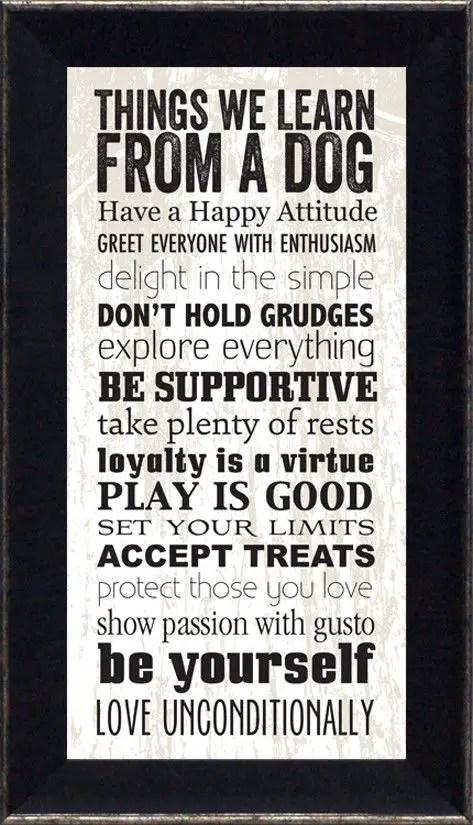 dog quotes happy
