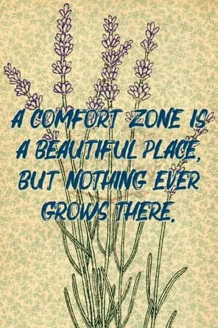 best comfort zone quotes