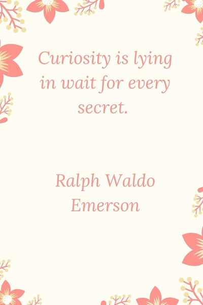 most famous quotes on curiosity