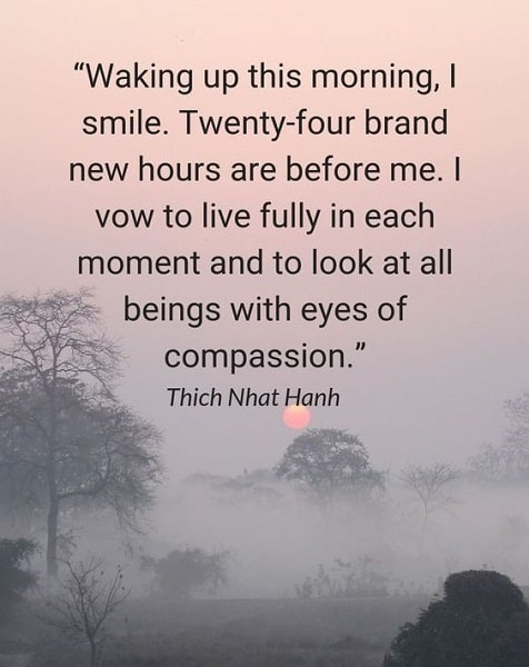 thich nhat hanh quotes to live fully