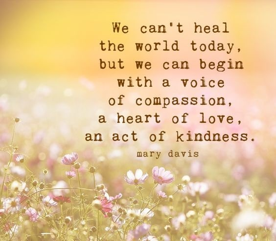 compassion life quotes