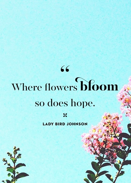 spring quotes inspirational