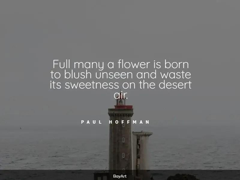 encouraging desert quotes