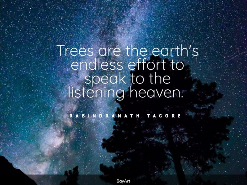encouraging tree quotes