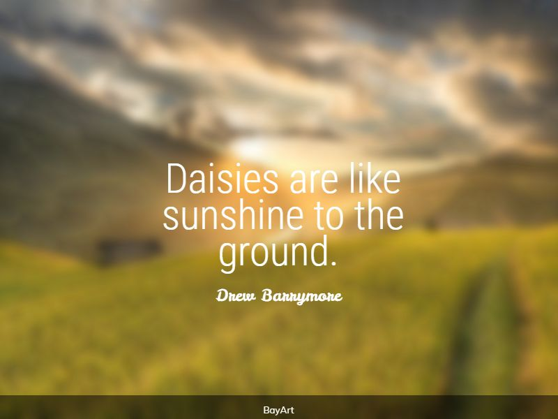 greatest daisy quotes