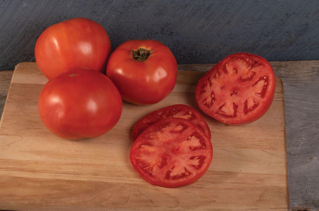 Galahad Tomato Image