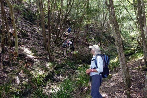 Ascending to the ridge