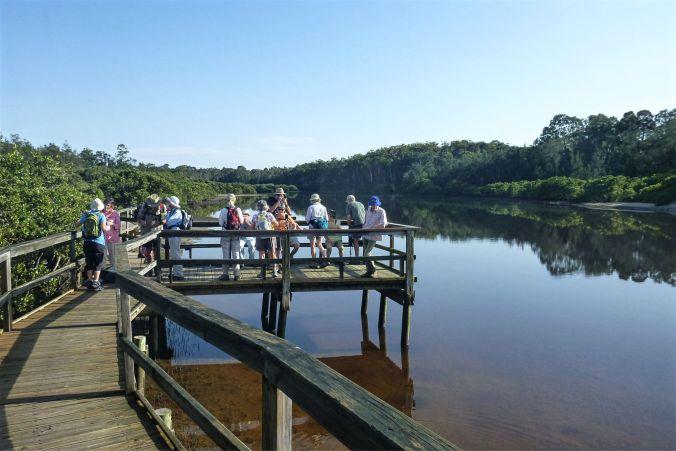 Cullendulla Creek Boardwalk