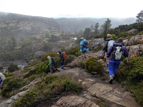 Tackling the Tarn Shelf in fog, Mt Field National Park