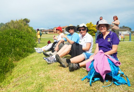 Whale watching at morning tea