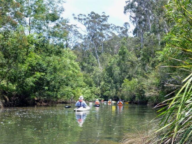 Nutleys Creek