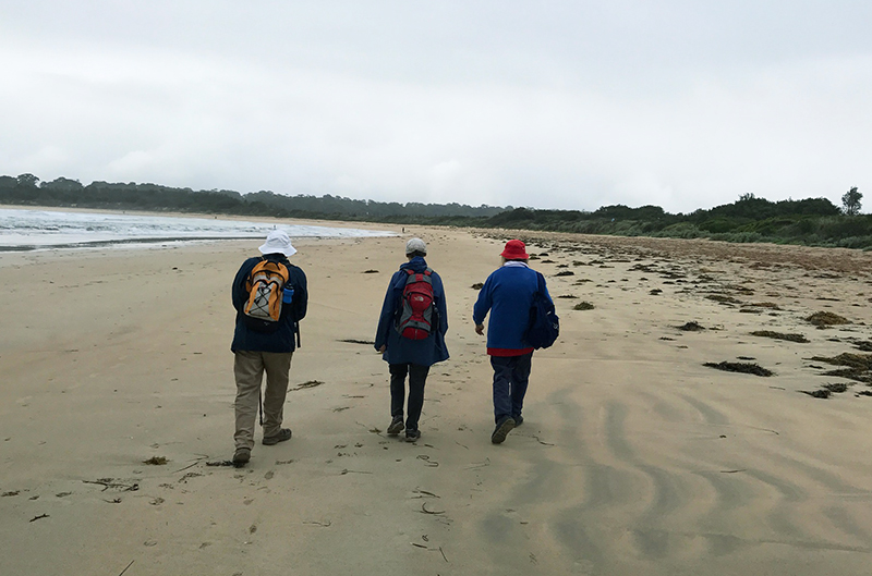 3 walkers defy the rain on Tomakin Beach