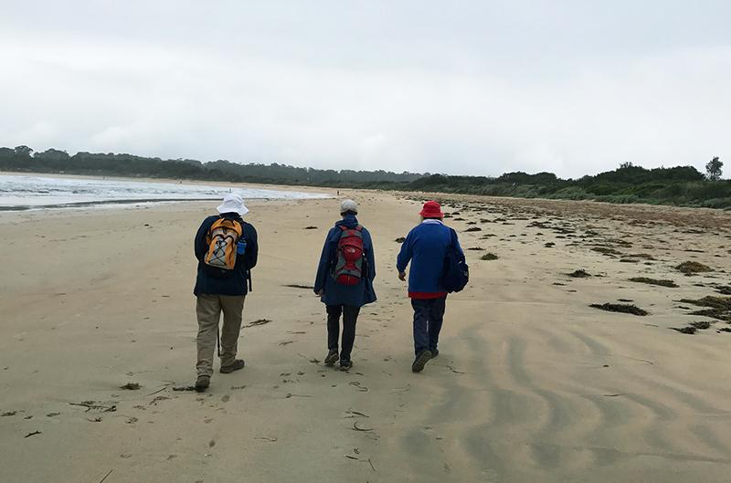 3 walkers defy the rain on Tomakin Beach