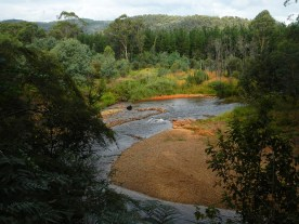 Bend in the Ovens River on Cherry Walk