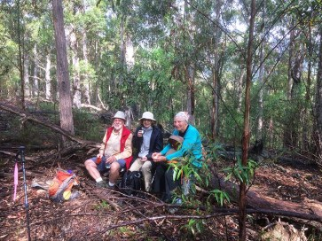 Bob, Elaine and Molly enjoy morning tea on a 'comfy' log