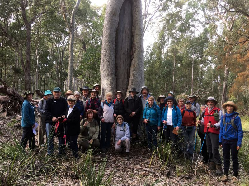 A big turnout to enjoy this surviving piece of indigenous heritage