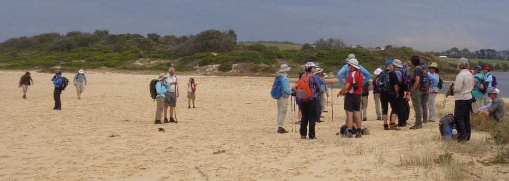 Dalmeny and Batemans Bay club members enjoy a day out together.