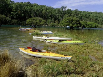 Kayaks at rest on grassy spit.