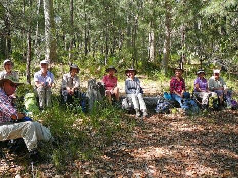 Rodney, Glenn, Karen, Helen, Karen, Betty, Carol, Pat and Donna take a break and a chat on one of natures 'chairs' in the forest.
