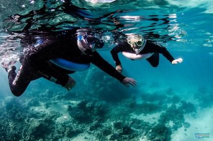 A practice snorkel.