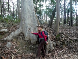 Carol with Spotted Gum.