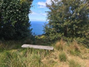 Rest spot on coast track